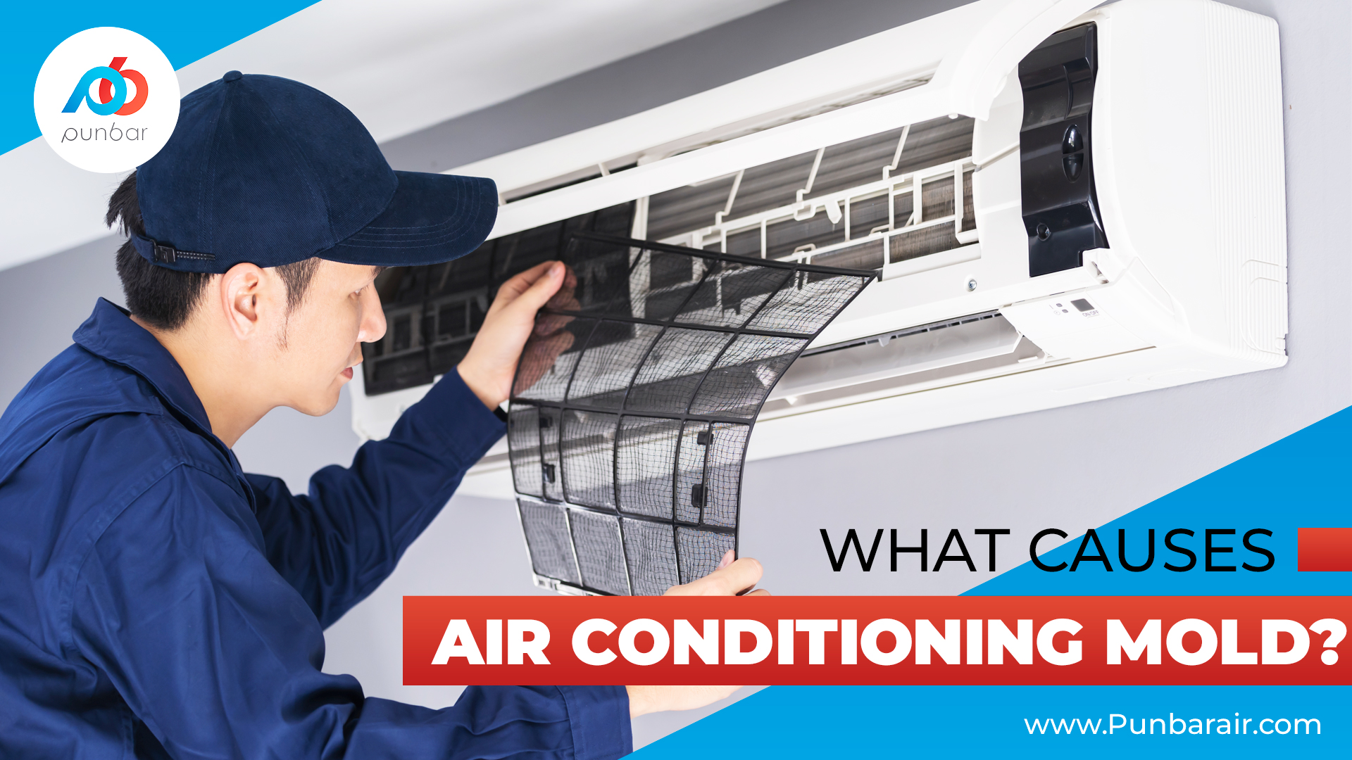 What-Causes-Air-Conditioning-Mold